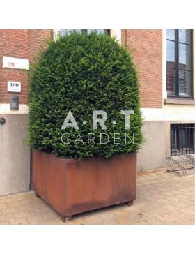 Walfilii fabricant de pots jardini res et bras ro en acier de haute qualit art garden for Brasero de jardin belgique