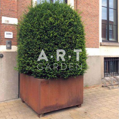 Jardinière design Walfilii Florence pour votre jardin look industriel en acier corten