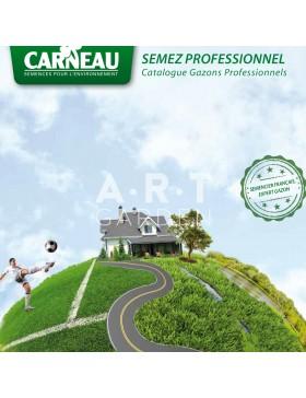 Gazon prestige pas cher art garden for Gazon 25 kg pas cher