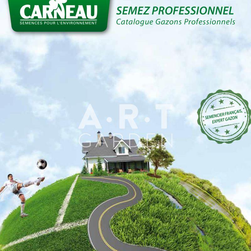 Gazon Pour Terrain Sec Et Region Du Sud
