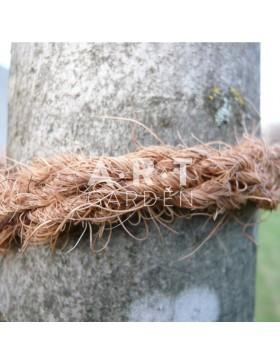 Lanière COCO pour tuteur arbre