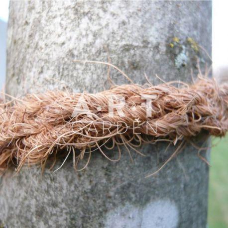 LANIERE COCO pour arbres