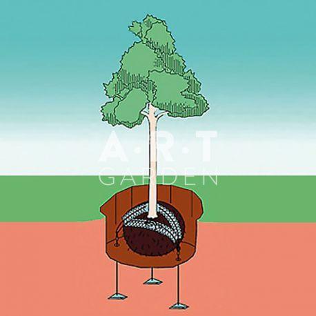 Dessin ANCRAGE de MOTTE avec CABLE Platipus pour arbre jusqu'à 12m